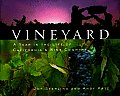 Vineyard A Year In The Life Of Californi