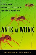 Ants At Work How an Insect Society Is Or