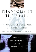 Phantoms In The Brain Probing The Myster