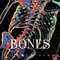 Bones Our Skeletal System