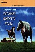 Stormy Mistys Foal