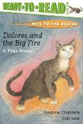 Dolores and the Big Fire: A True Story (Ready-To-Read)