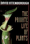 Private Life Of Plants A Natural Histo