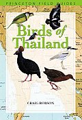 Birds of Thailand (Field Guides)