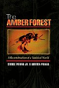 Amber Forest A Reconstruction Of A Vanis
