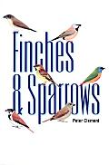 Finches & Sparrows An Identification Guide
