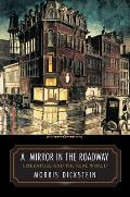 Mirror in the Roadway Literature & the Real World