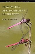 Dragonflies & Damselflies Of The West