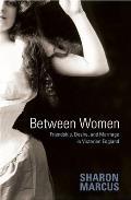 Between Women: Friendship, Desire and Marriage in Victorian England
