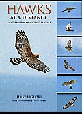 Hawks at a Distance Hawks at a Distance: Identification of Migrant Raptors Identification of Migrant Raptors
