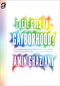 There Goes the Gayborhood? (Princeton Studies in Cultural Sociology)