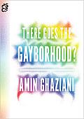 There Goes the Gayborhood? (Princeton Studies in Cultural Sociology)