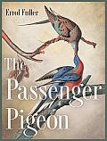 The Passenger Pigeon