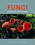 Encyclopedia of Fungi of Britain & Europe