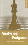 Analysing The Endgame