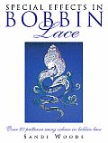 Special Effects In Bobbin Lace Over 20 Patterns Using Color in Bobbin Lace