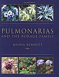 Pulmonarias & the Borage Family
