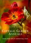 Cottage Garden Favourites Annuals Grown