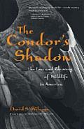 Condors Shadow