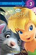 Fairy Tale Tinker Bell