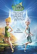 Secret of the Wings Junior Novelization Disney Fairies