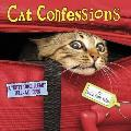 Cat Confessions: A A Oekitty Come Cleana Tell-All Book