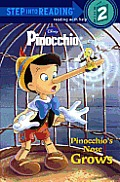 Pinocchio's Nose Grows