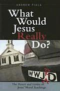 What Would Jesus Really Do?: The Power and Limits of Jesus' Moral Teachings