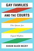 Gay Families & the Courts
