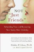 Not Just Friends Rebuilding Trust & Recovering Your Sanity After Infidelity