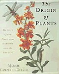 Origin Of Plants The Story Of How Plants