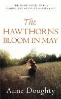 Hawthorns Bloom in May