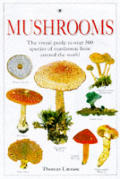 Mushrooms the Visual Guide To Over 500 S