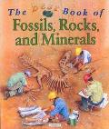 The Best Book of Fossils, Rocks, and Minerals (Best Book Of...)