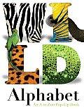 Wild Alphabet An A To Zoo Pop Up Book
