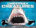 Kingdom Undersea Creatures