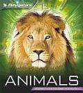 Navigators: Animals (Navigators)