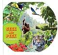 Seek & Peek In the Rainforest