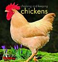 Choosing & Keeping Chickens