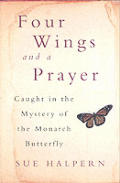Four Wings & a Prayer