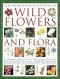 The World Encyclopedia of Wild Flowers and Flora: An Authorative Guide to More Than 750 Wild Flowers of the World, Beautifully Illustrated with More T