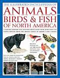 The Illustrated Encyclopedia of Animals, Birds & Fish of North America: A Natural History and Identification Guide to the Captivating Indigenous Wildl