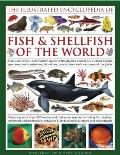 The Illustrated Encyclopedia of Fish & Shellfish of the World
