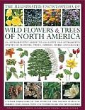The Illustrated Encyclopedia of Wild Flowers & Trees of North America: An Expert Reference and Identification Guide to Over 2000 Wild Flowers and Plan