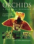 Orchids a Practical Handbook
