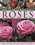 How to Grow Beautiful Roses: A Practical Guide to Growing, Caring for and Maintaining Roses, Shown in Over 275 Glorious Photographs