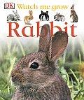 Watch Me Grow Rabbit