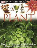 Plant (DK Eyewitness Books) Cover