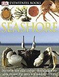 Seashore Eyewitness 2004