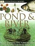 Pond & River (DK Eyewitness Books)